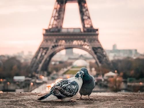Peut-on vivre heureux dans le Grand Paris ?